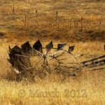windmill down in pasture
