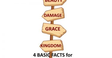 4 Crucial Facts: Beauty, Damage, Grace, Kingdom