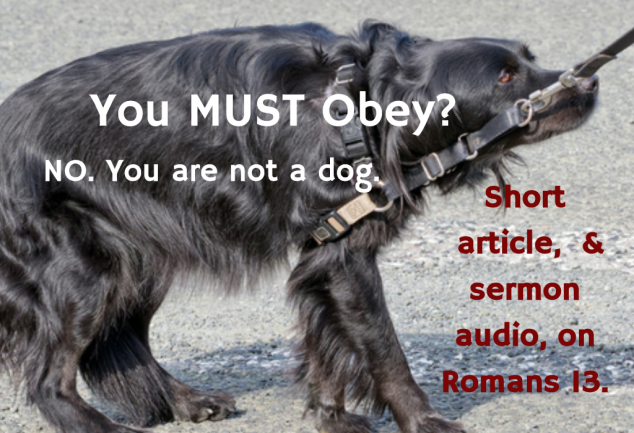 You MUST Obey? No. You Are Not a Dog.