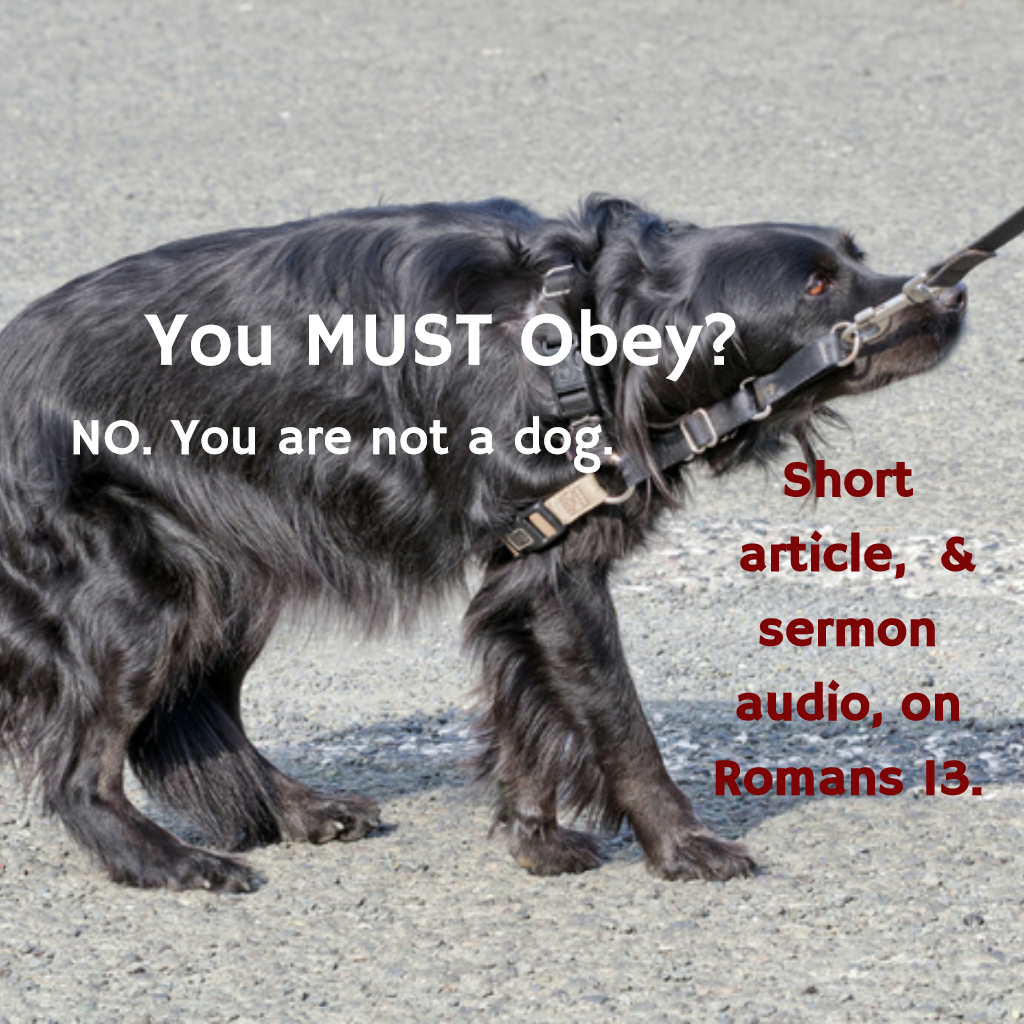 You MUST Obey? No  You Are Not a Dog  Romans 13  – PublicChristian Blog